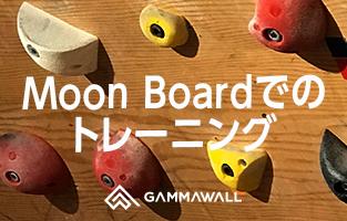 Moon Board(ムーンボード)でのトレーニング
